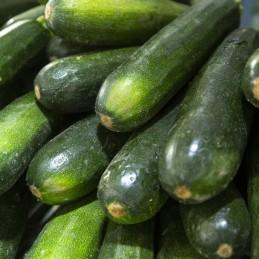 Courgettes 500 g