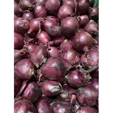 Oignons rouges 1 kg