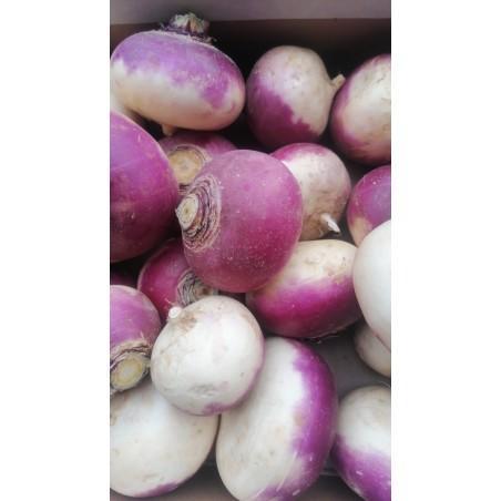 Navets violets 500 g